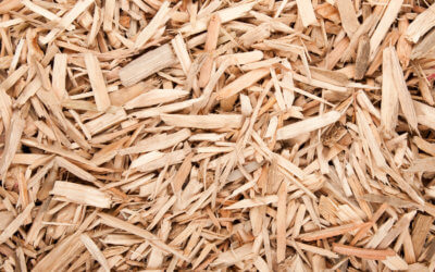 WRA renews call on biomass boiler fuel supply