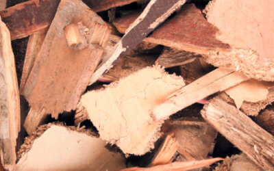 Hear about the C&D industry's role in our waste wood classification project